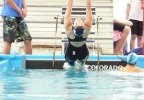 fernandez sofia natacion espalda 1
