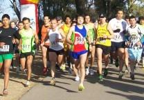 maraton apav 1