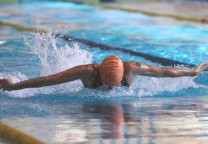 natacion mariposa 1