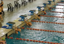 natacion emder largada espalda