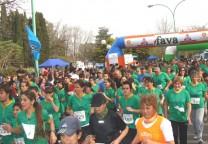 rotary ranelagh 2011