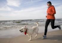 perro running playa 1