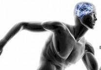running cerebro 1