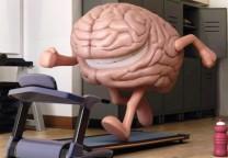 cerebro deporte 2